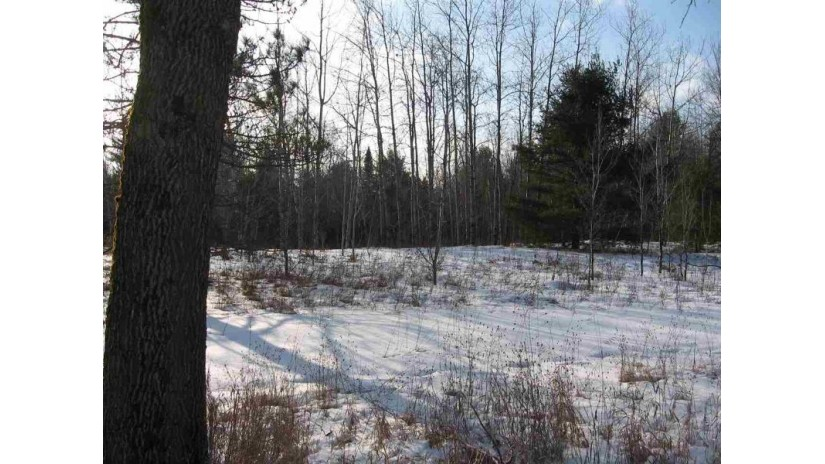 12867 HWY 32/64 Mountain, WI 54149-9535 by Exit Elite Realty $46,000