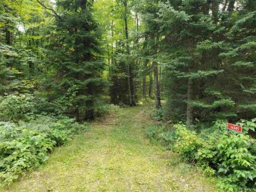 16445 STAR LAKE Road, Doty, WI 54149-0000