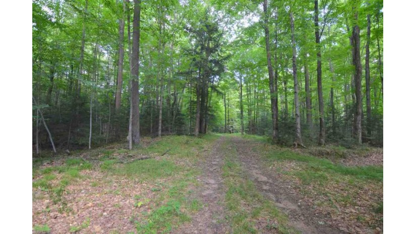 HENNING CREEK Road Bartelma, WI 54416 by O'Connor Realty Group $139,900