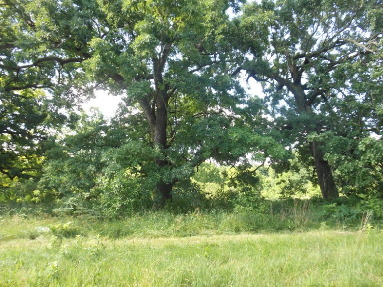 L18 Penny Ln Dodgeville, WI 53533 by First Weber Real Estate $84,900