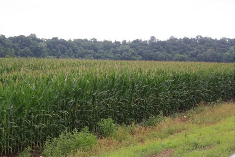 113.28 AC King Rd, Mineral Point, WI by First Weber Real Estate $695,000