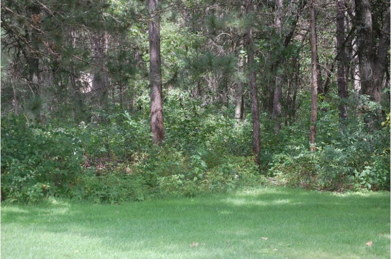 1447 Sawgrass Dr, Nekoosa, WI by First Weber Real Estate $23,900