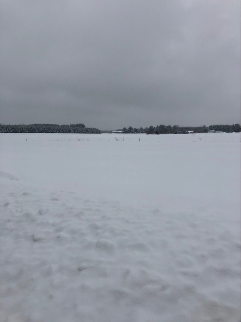 LOT 3 BLK 1 Eugene Street, Merrill, WI by First Weber Real Estate $9,900