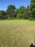 LOT 52 Landcaster Road VILLAGE WOOD MEADOWS, Plover, WI by First Weber Real Estate $44,900