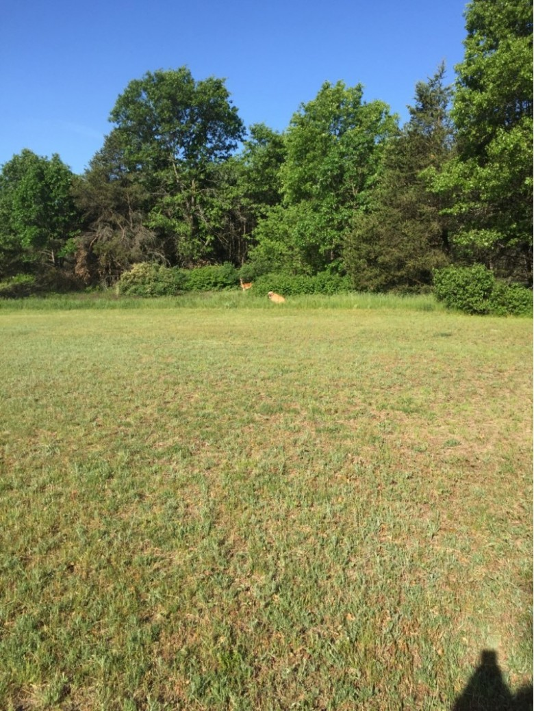 LOT 53 Landcaster Road VILLAGE WOOD MEADOWS, Plover, WI by First Weber Real Estate $44,900
