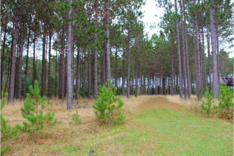 LOT 4 Old Hwy 51, Arbor Vitae, WI by First Weber Real Estate $34,900