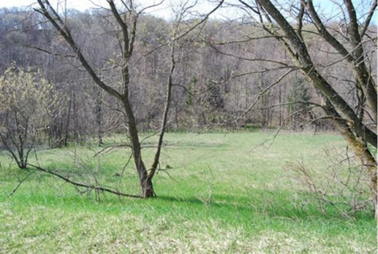 L61 Staghorn Ct, La Valle, WI by Re/Max Preferred $5,990