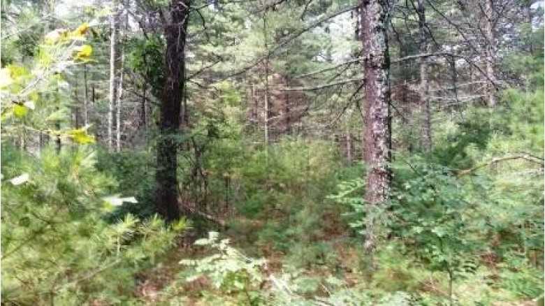 L42 18th Ave, Arkdale, WI by Terra Firma Realty $19,500