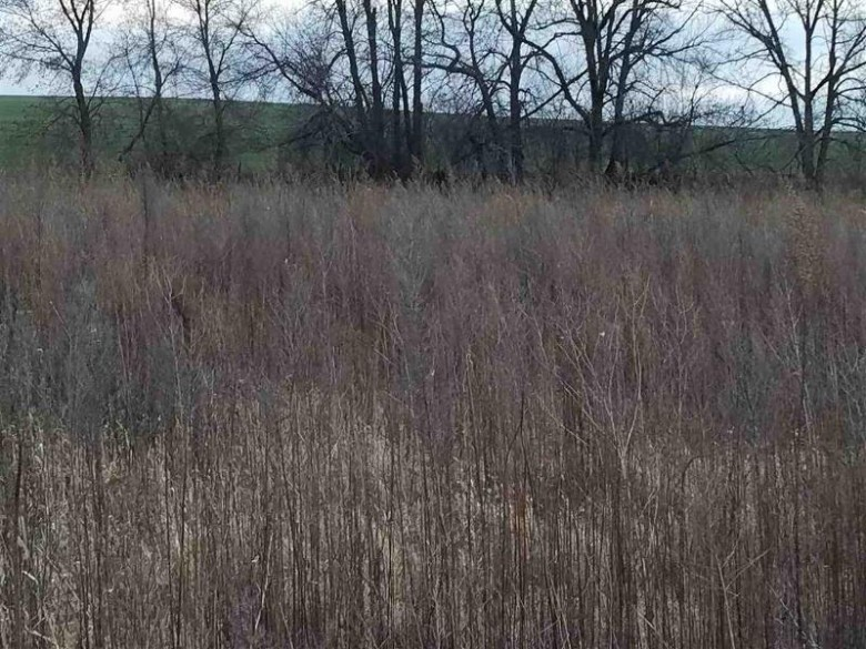 L2 Danny Ln, Fond Du Lac, WI by Madison Realty Group $30,000