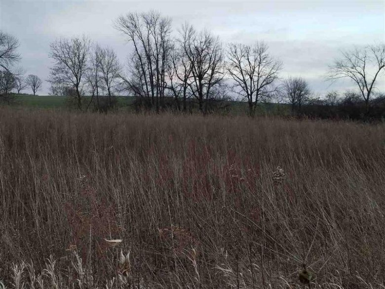 L3 Danny Ln, Fond Du Lac, WI by Madison Realty Group $30,000