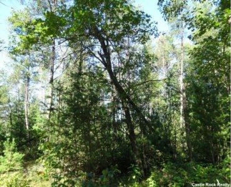 L94 Timber Tr, New Lisbon, WI by Castle Rock Realty Llc $7,900