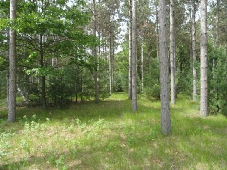 L3 Dover Dr, Friendship, WI by First Weber Real Estate $50,000