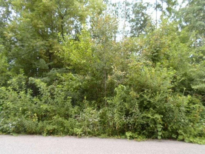 L45 Industrial Dr, North Freedom, WI by Nth Degree Real Estate $49,900
