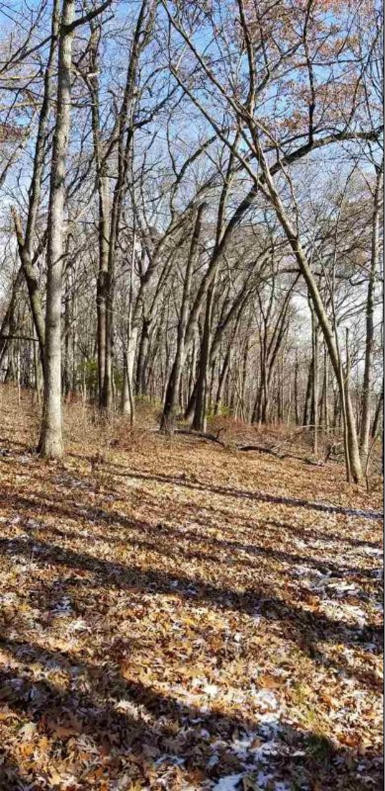 35.01 AC Thistledown Dr, Lodi, WI by Wisconsin Realty Group $350,000