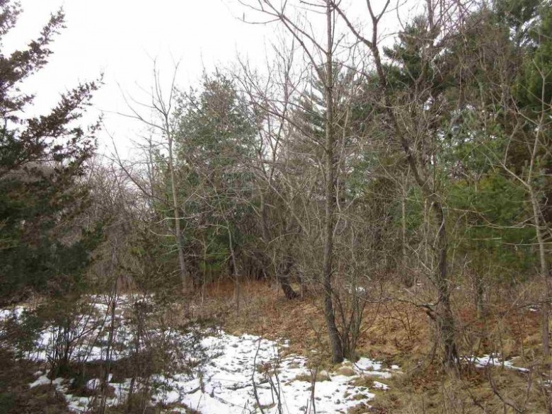 L9 Martiny Ct, Baraboo, WI by Century 21 Affiliated $35,900