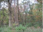 3.25 AC Hwy 13, Arkdale, WI by Whitemarsh Realty Llc $21,500