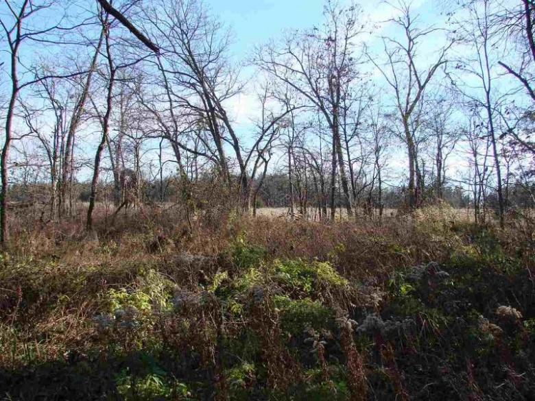 N8436 Starr Rd, Portage, WI by Century 21 Affiliated $44,500