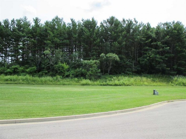 987 Pine Ridge Ct, Brownsville, WI by Mi-Realty, Inc. $45,500