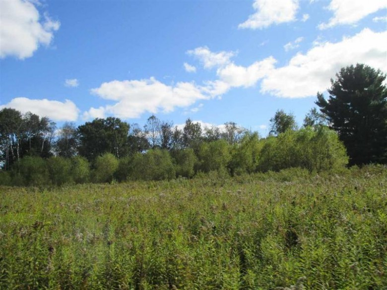 85 AC Ember Ln, Montello, WI by First Weber Real Estate $199,750