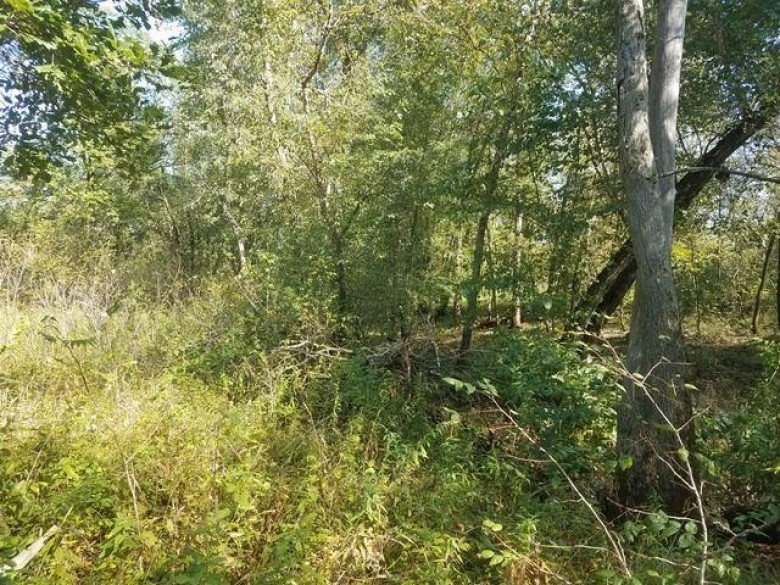 000 County Road Hh, Mauston, WI by Gavin Brothers Auctioneers Llc $122,824