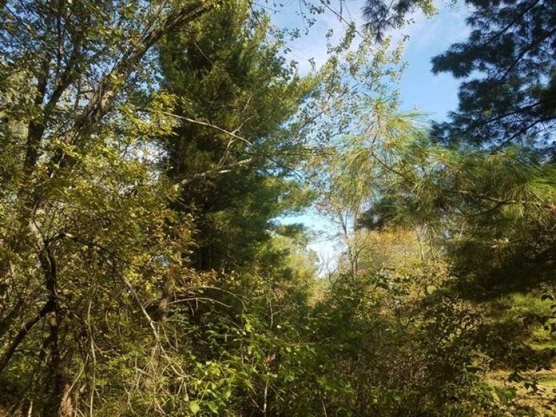 43.39 AC County Road Hh, Mauston, WI by Gavin Brothers Auctioneers Llc $112,814