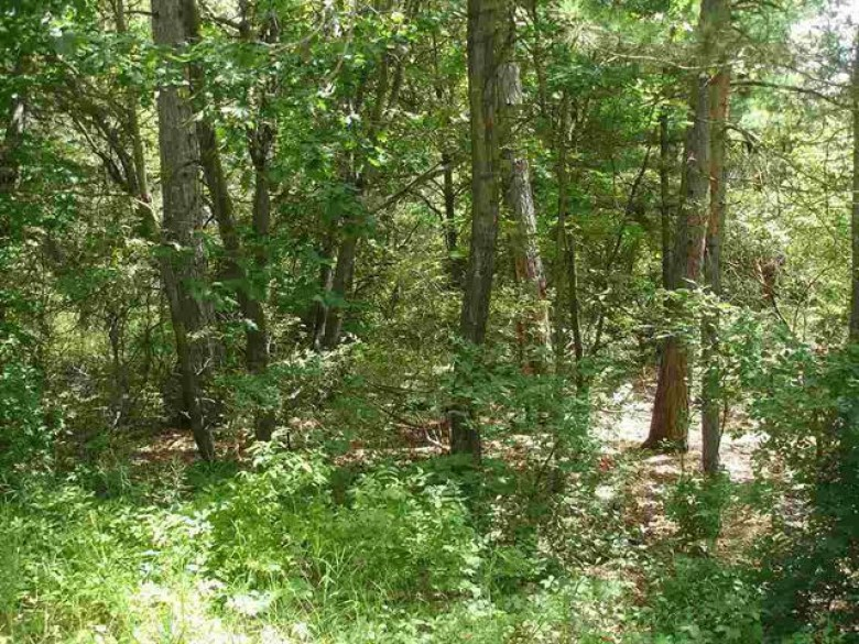 LOT 33 18th Ln, Montello, WI by First Weber Real Estate $20,000