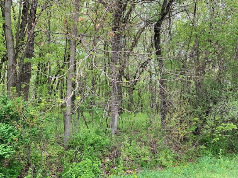 5.249 AC Ziebell Rd, Jefferson, WI by Re/Max Community Realty $224,900