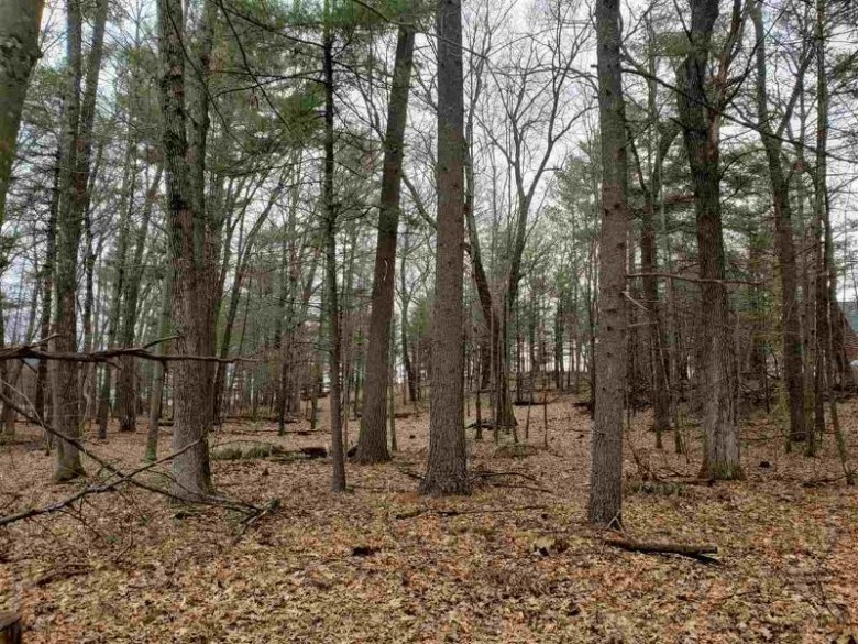 L92 Badger Ct, Arkdale, WI by Terra Firma Realty $78,000