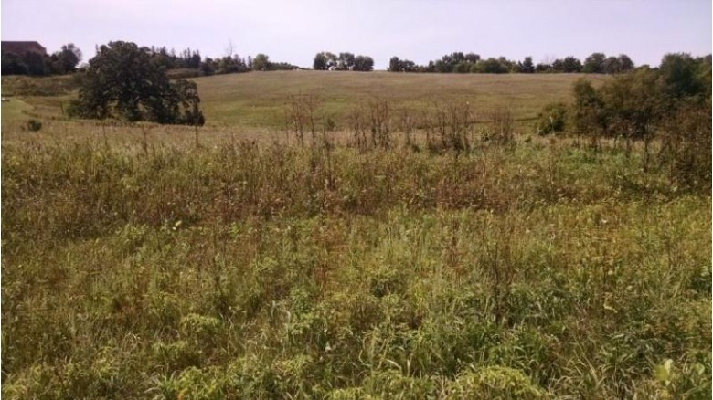 L3 Sunset Ave, Mount Horeb, WI by Right Now Realty Llc $116,000