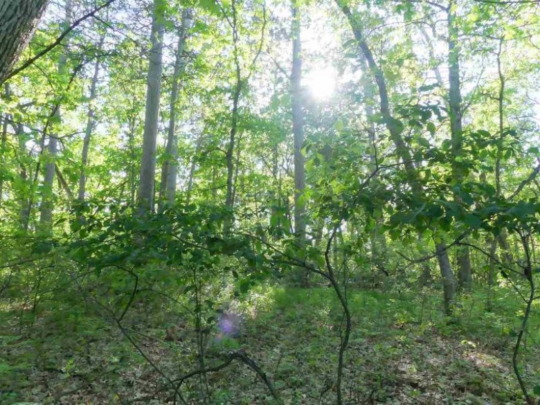 Lot 11 River Highland Dr, Lyndon Station, WI by Castle Rock Realty Llc $115,000