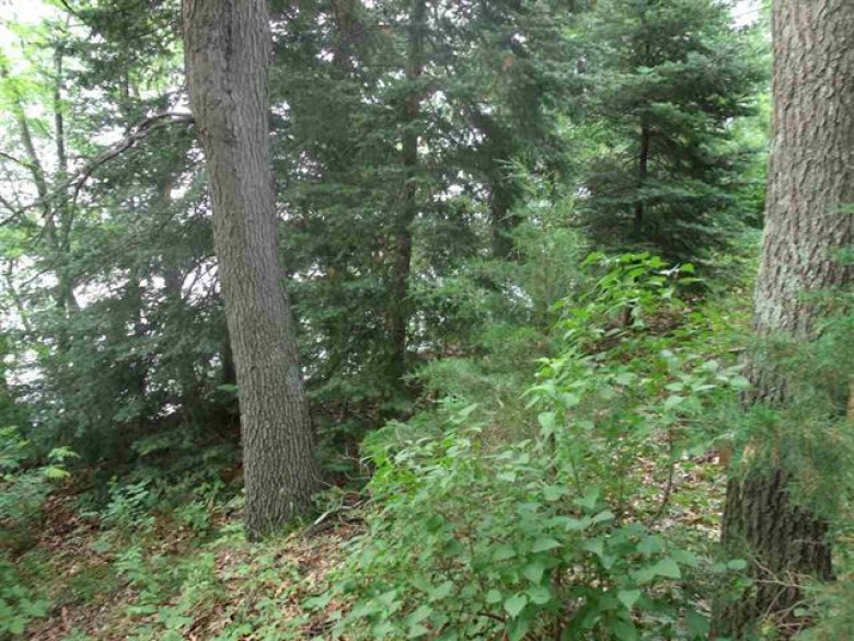 W3986 Cotters Bay Rd, Montello, WI by Whitemarsh Properties Llc $49,900