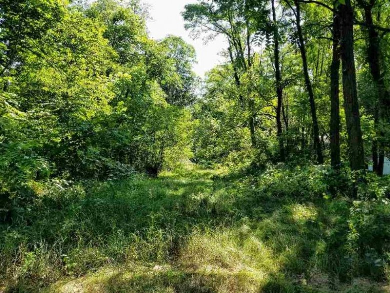 S12674 County Line, Spring Green, WI by Century 21 Affiliated $65,000