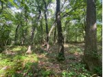 L87 Christmas Mountain Dr, Wisconsin Dells, WI by Re/Max Grand $35,000