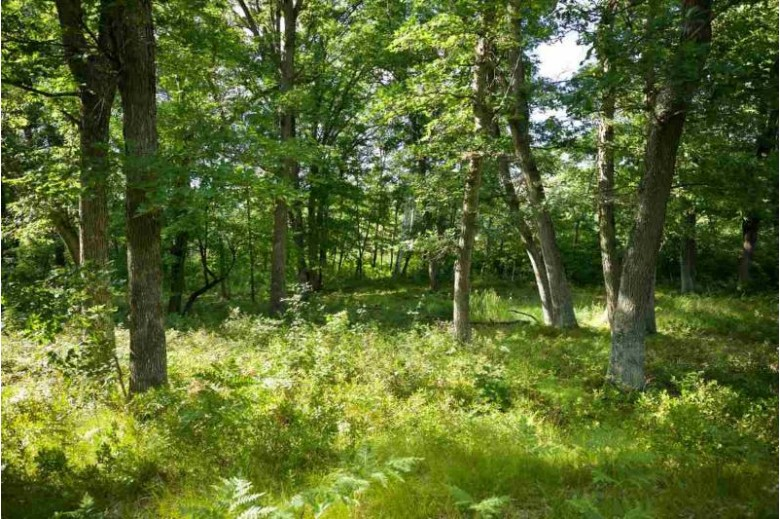 80 AC Browndeer Ave, Friendship, WI by United Country Midwest Lifestyle Properties $220,000