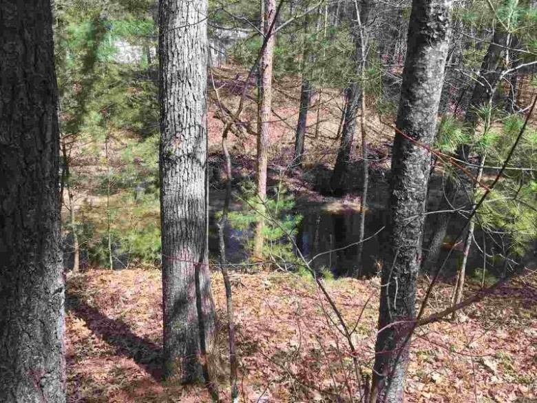 147 Cliffside Dr, Lake Delton, WI by Cold Water Realty, Llc $37,500