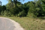 L56 & L57 S Fur Dr, Wisconsin Dells, WI by First Weber Real Estate $16,500