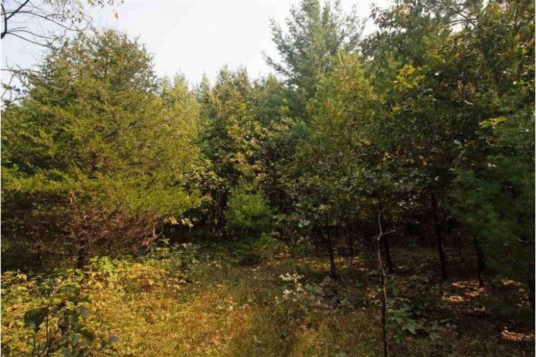 L1 White Pine Way, Spring Green, WI by Century 21 Affiliated $64,200