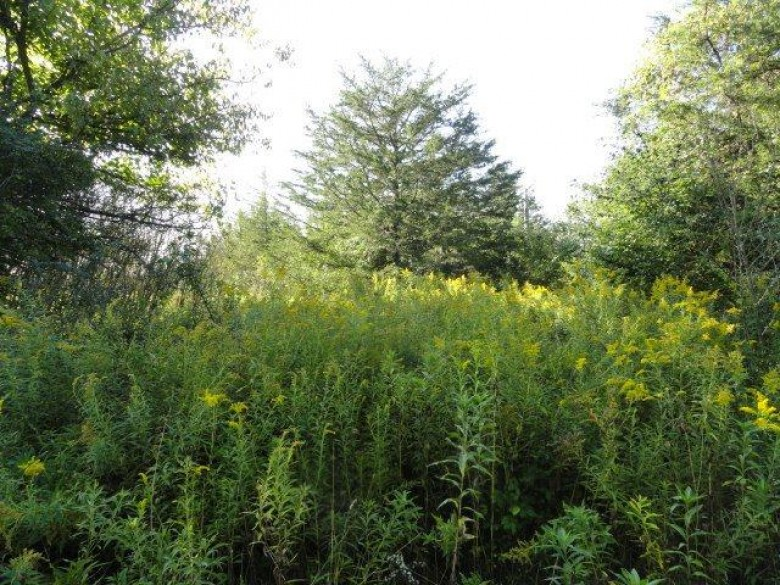 N2901 Cedar Rd, Markesan, WI by Re/Max Connections $149,900