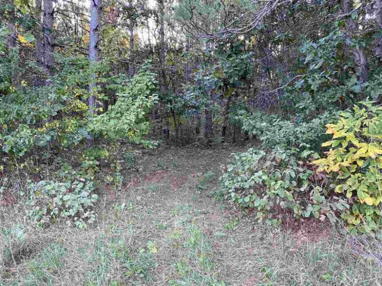 L1 24th Ave, Mauston, WI by Castle Rock Realty Llc $62,500