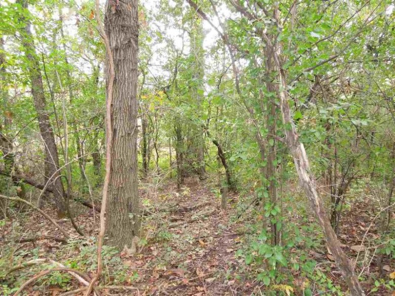 County Road D, Dousman, WI by Whitetail Properties Real Estate Llc $870,000