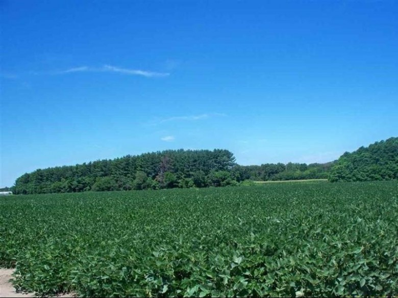 40 ac Hwy 14, Spring Green, WI by Century 21 Affiliated $360,000