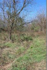 10 AC Meadow Brook Rd, Argyle, WI by First Weber Real Estate $99,000
