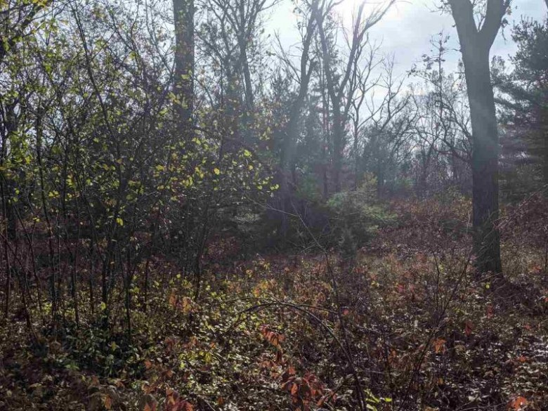 637 Forest Way Dr, Grand Marsh, WI by Coldwell Banker Belva Parr Realty $7,900