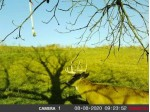 LOT 2 CSM 1564 Timber Ln E, Boscobel, WI by Century 21 Affiliated $35,000