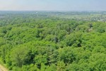 LOTS A, C, & D County Road Q, Middleton, WI by First Weber Real Estate $1,299,000