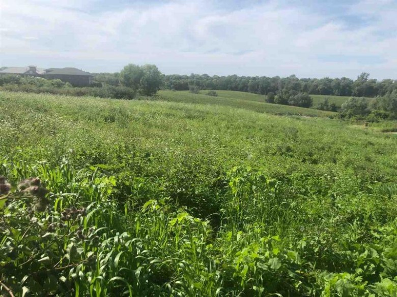 LOT 9 Jamie Jo Cir Mount Horeb, WI 53572 by First Weber Real Estate $129,000