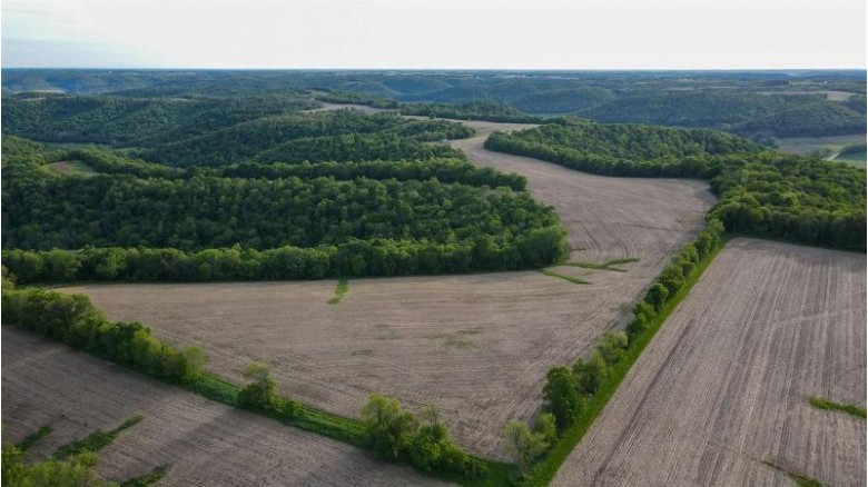 126+/- ACRES Hwy 88 Alma, WI 54610 by Midwest Land Group Llc $599,900