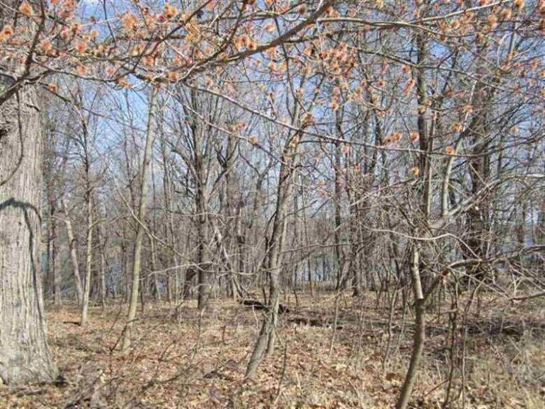 LOT 443 Summit Point, La Valle, WI by Evergreen Realty Inc $185,000