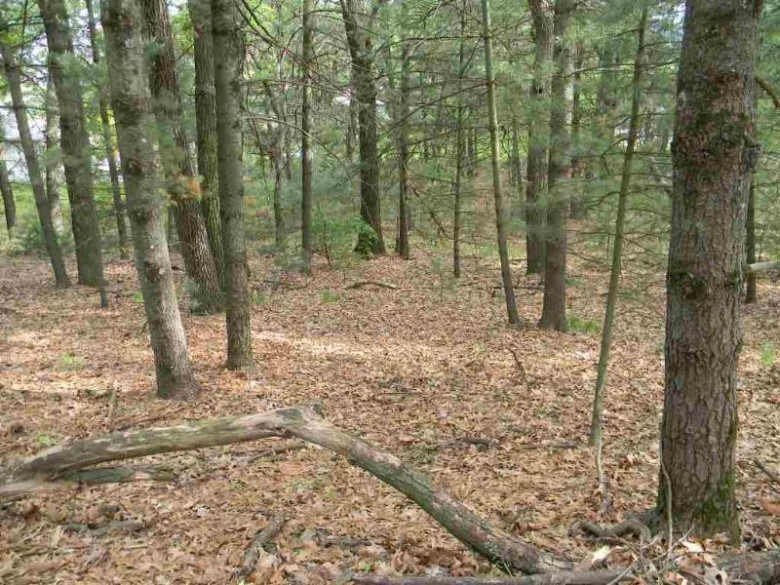 L163 Pleasant View Dr, Wisconsin Dells, WI by Wisconsin Dells Realty $42,000
