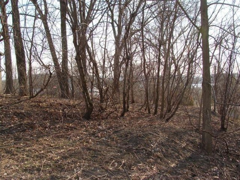 L7 Lakeview Dr, Lodi, WI by First Weber Real Estate $38,000